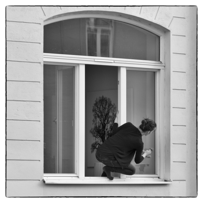 window_cleaning-hi